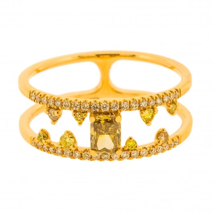 Richard Woo Fancy Colour Diamond Ring with Double Band