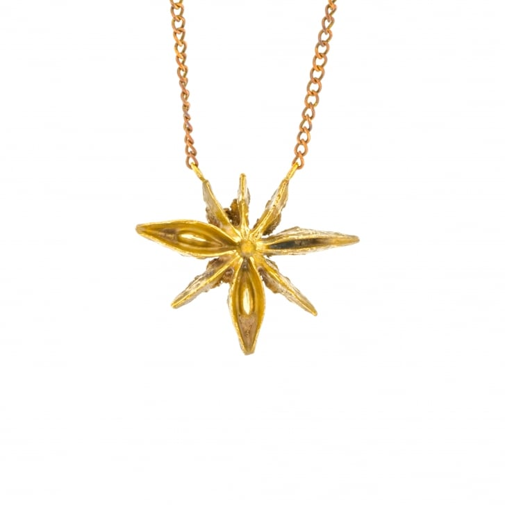 Issy White Organic Star Anise Necklace in Bronze